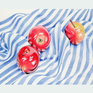 262 APPLES ON STRIPES